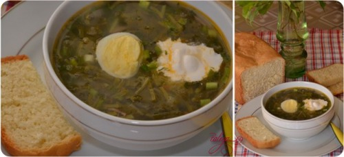 Green cabbage soup with sorrel