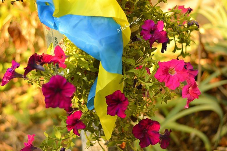 З Днем Прапора, українці!!!