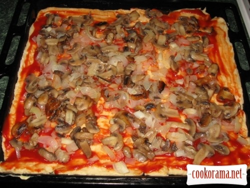 Pizza with mushrooms and chicken