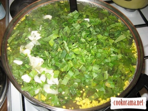 «Зелений борщ» або весняний супчик