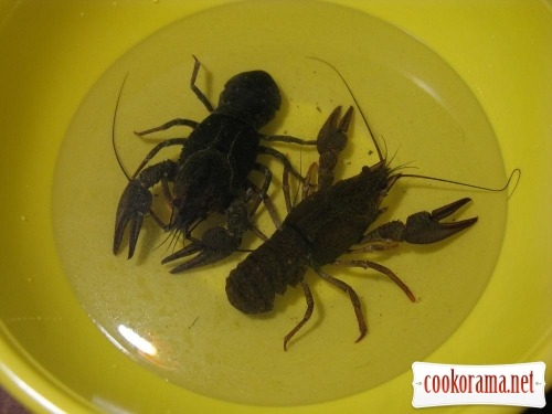 Crayfish cooked in beer