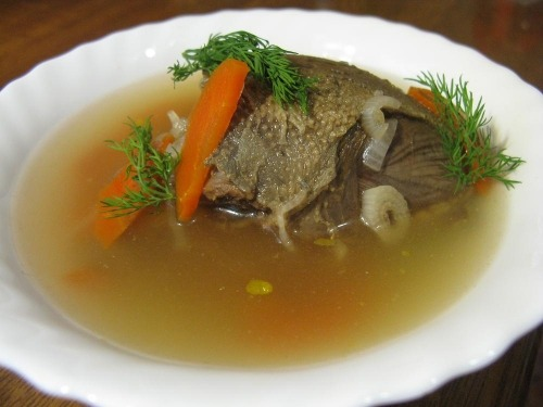 Broth from pigeon