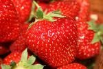 Їжте полуницю - підвищуйте імунітет