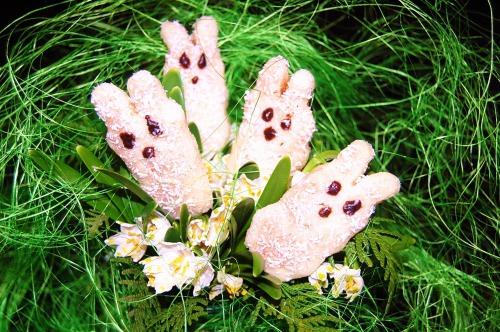 Весняні зайці