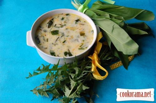 Весенний суп с дикорастущей зеленью