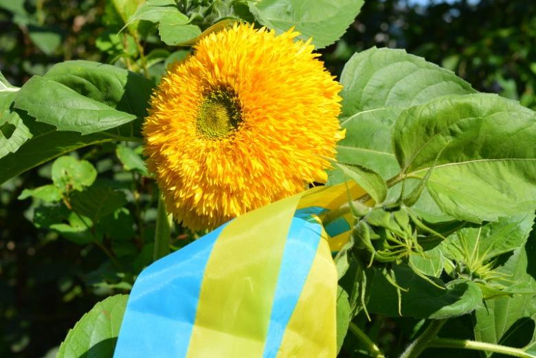 З днем прапора, українці!