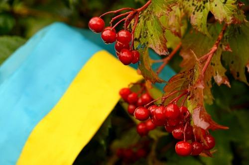 З Днем Незалежності, Україна!З Днем Незалежності, українці!