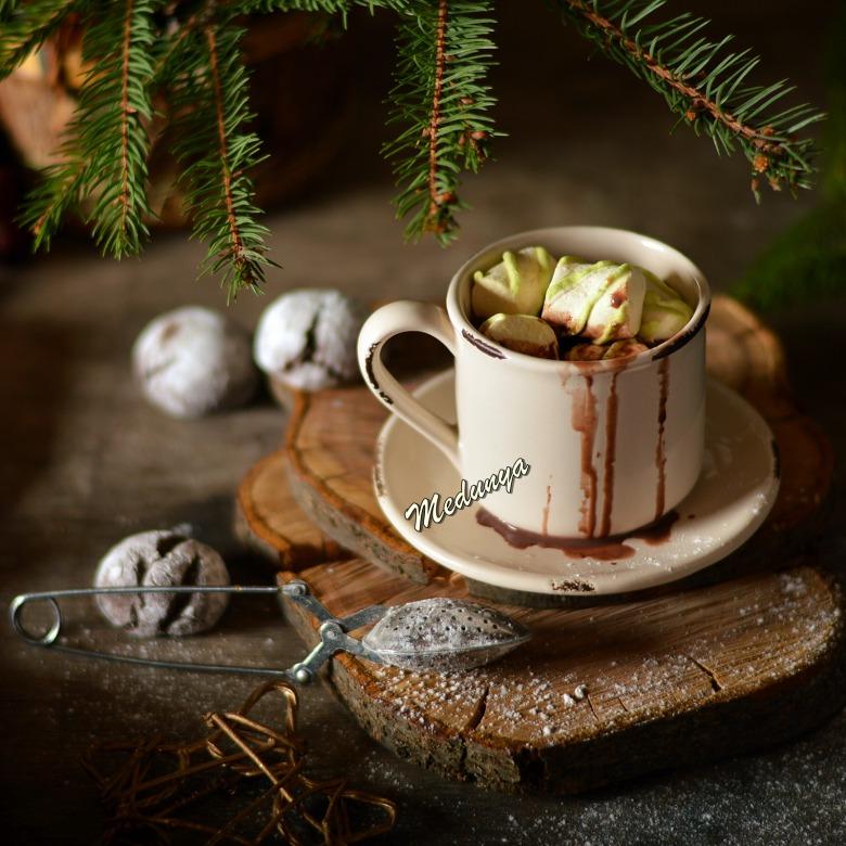 Пудингове какао