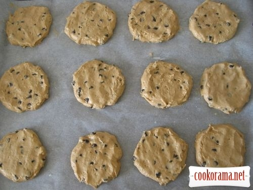 Coffee cookies with chocolate drops