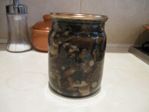 Pickled honey agarics