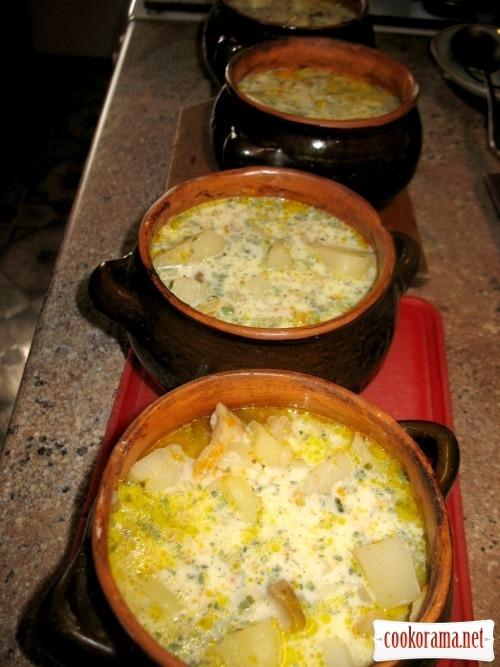 Mushrooms in pots