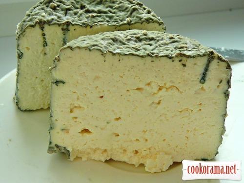 Домашний сыр - лучшие способы приготовления - Как ...