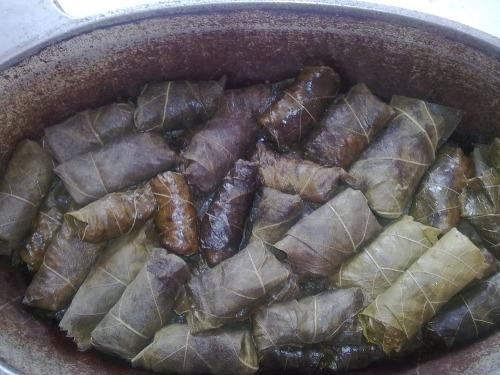 Долма турецька