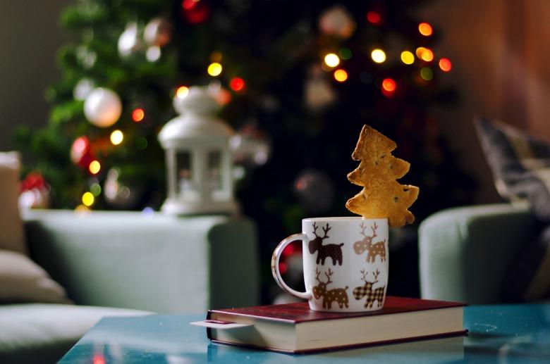 Нове від Медуні і перевидання Дарії Цвєк - кулінарні книжкові новинки грудня