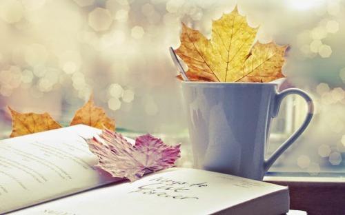 Кулінарні книги-новинки осені 2017