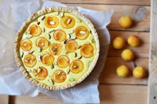 Пиріг з сиром та абрикосами