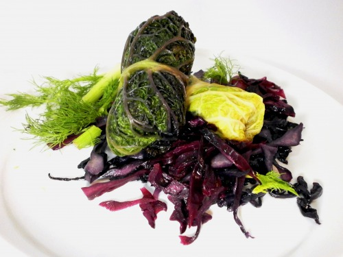 Cabbage rolls from savoy cabbage with garnish of red cabbage, presented in two colors