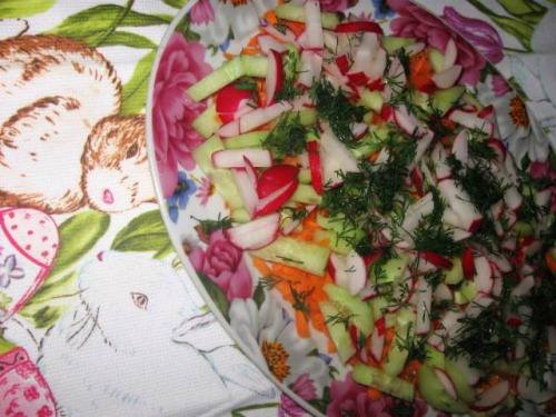 Salad from radish, carrot and cucumber