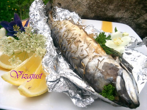 Mackerel baked with rosemary