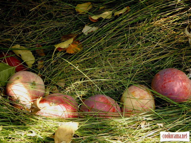 Печенье с яблочно-грушевой начинкой