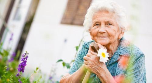 """Десятиденний флешмоб присвячений  міжнародному дню людей похилого віку """" Бабусині смаколики""""."""