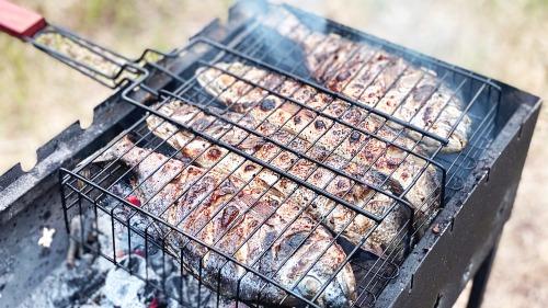 Як смачно приготувати Сібас та Дорада дома і на природі